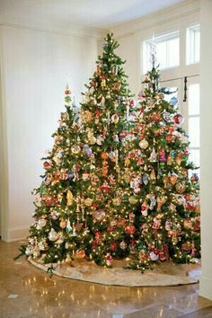 Cristhmas Tree Decorations Ideas : For some day when I have a room big enough to accommodate three trees! Christmas Time Is Here, Noel Christmas, Winter Christmas, Christmas Lights, Vintage Christmas, Whimsical Christmas, Christmas Tree Decorations, Holiday Decor, Xmas Trees