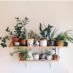 There are lots of Boho Home and Apartment Decor and that is a number of these. We create a massive collection of Stylist and Chic Boho Home and Apartment Interior Decor which you can try on yours. In the event… Continue Reading → Home Design Decor, Diy Home Decor, House Design, Design Ideas, Garden Design, Plant Design, Home Decor With Plants, Design Design, Design Trends