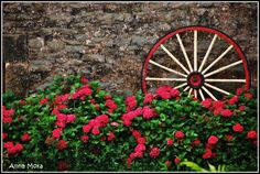 like this paint theme for my old wagon wheels