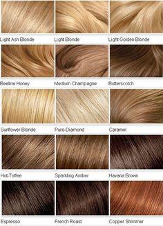 2014 Blonde Color Shades for Hair blonde color chart. fascinating. missing platinum beige