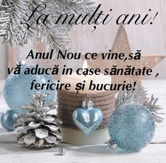 An Nou Fericit, Happy Birthday Greetings, True Words, Happy New, Christmas Bulbs, Messages, Holiday Decor, Creative, Floral