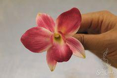 Gumpaste Sugar Orchid