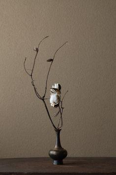 2012年1月27日(金) 枯れることは、「らしさ」から自由になることです。 花=松(マツ)、綿(ワタ) 器=金銅華瓶(鎌倉時代)