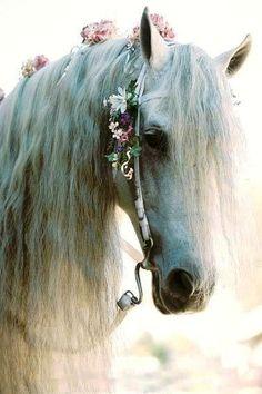 #decoracion #caballo #floresvintage