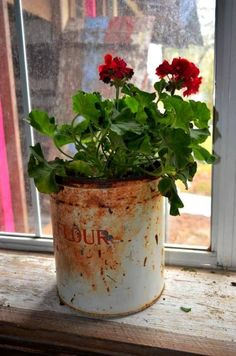 Decorative tin boxes are hot, hot collector's items for use as planter boxes for indoors or out. Metal Planters, Flower Planters, Fall Planters, Container Plants, Container Gardening, Succulent Containers, Container Flowers, Vegetable Gardening, Garden Projects
