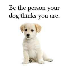"""Be the person your dog thinks you are"""