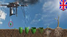 Seed bomb drones: UK-based start-up to plant one billion trees in one ye...
