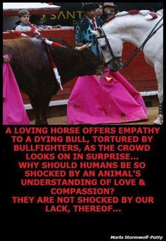 Please Have Compassion To All Animals~Have Mercy On Them~