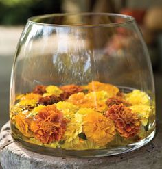 Marigolds floating in water.  could be done with other flowers