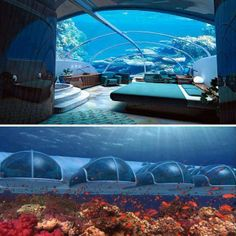 Such a marvelous under sea hotel room! Would you like to stay here for for your next vacation?