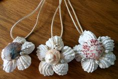 Sea Shell Ornaments Holiday