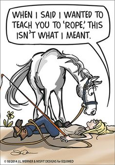 hope you Like our October comic and Share it with your friends. Funny Horse Memes, Funny Horse Pictures, Funny Horses, Cute Horses, Horse Love, Funny Animals, Horse Humor, All The Pretty Horses, Beautiful Horses