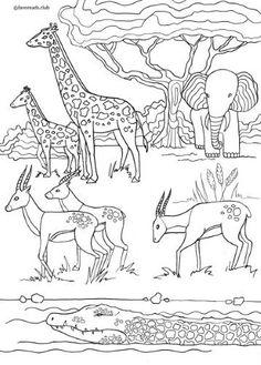 Afrika bilder zum ausmalen Afrika tiere Ausmalbilder