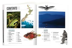 New Zealand Geographic Issue 110 by Marc Backwell, via Behance