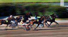 Viime heinäkuussa ravattiin Vermossa. Ensi toukokuussa hevosia nähdään Helsingin ytimessä.