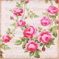 Cabbage Roses Digital Download no.424 Garden Rose 13x13 Background... ($5.75) ❤ liked on Polyvore featuring home, home decor, wallpaper, backgrounds, flowers, pink, pink flower wallpaper, pink flamingo wallpaper, flower wallpaper and pink wallpaper