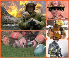 Pet Fire Safety Day is July 15 - tips to keep your pet safe and how to help firefighters save your pet in case of a fire emergency.
