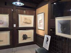只今開催中! <パリ・NEKO・コレクション 2015>日本会場展の画像:'猫の眼'