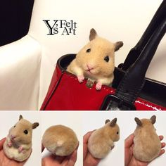 Cute Needle felted project wool animals mice(Via @yukarin5211)