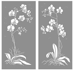 Orchid Stencils Moth Orchid Stencil