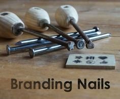 Picture of Branding Nails