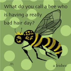 -Here's a Bee Joke for you! What do you call a bee who is having a bad hair … Here's a Bee Joke for you! What do you call a bee who is having a bad hair day? A Frisbee! Call Bee Specialists in Bloomfield Hills, MI today at to schedule an … Cute Jokes, Corny Jokes, Stupid Jokes, Funny Jokes For Kids, Dad Jokes, Terrible Jokes, Funny Shit, Funny Puns, Funny Stuff