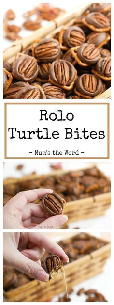 Rolo Turtle Bites – Nothing beats these 10 minute Simple Homemade Turtles. Sweet, Salty, Gooey – they have it all and are irresistible! #dessert #treat #chocolate #rolo #caramel #turtle #pecan #pretzel #pretzelturtle #roloturtle #10minutetreat #christmas #cookie #christmascookie #gift #teachergift #neighborgift #kidfriendly #recipe #numstheword