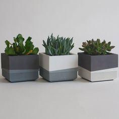 Concrete Pots, Wooden Planters, Concrete Planters, Ceramic Planters, Planter Boxes, Concrete Design, House Plants Decor, Plant Decor, Succulent Pots