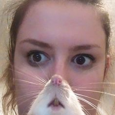 I was photobombed by a rat... I am now... Rat Woman