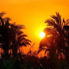 I Liked this Instagram: #thanksgod #lovegod  #harmonia_com_o_universo #gratidão #gratitude #gracias #graciasdiosportodo #godbless #godisamazing #goddaugther  #blessed #fotobrasil #olharesemimagens  #ok_sunset #sun #global_nature_sunsets #sol #pordosol #evening #lovesunset #sunset #brskies #beautiful #sunsetlovers #skyporn #beauty #beautifulsunset by dorasantos8