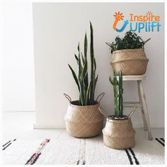 deco love Pflanzen zuhause How Baby Monitors Work One of the favorite thing Plantas Indoor, Belly Basket, Decoration Inspiration, Decor Ideas, 31 Ideas, Interior Plants, Home Interior, Home And Deco, Hanging Baskets