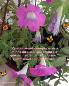 """""""Que eu atenda sempre mais à minha intuição, que sinaliza o que de mais autêntico possuo."""" (Emmanuel / Chico Xavier)"""