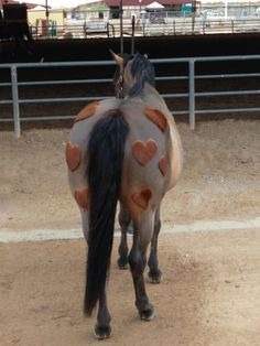 One time we did this to one of our ponies we one first place ever since :-)