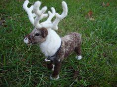 Needle Felted Reindeer | Flickr - Photo Sharing!