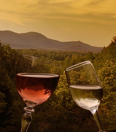Sample Chardonnay, Cabernet Sauvignon and Cabernet Franc at Parker-Binns Vineyard's new tasting room in the foothills of the Blue Ridge Mountains.