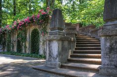 Swan House, Atlanta - Back Garden