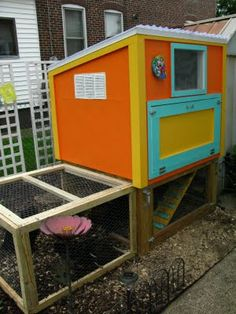i need a coop like this