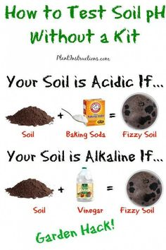 So you've started your very own vegetable garden, but now you realize that different vegetables require different soil pH! So how to test soil pH without a kit? Is your soil more acidic or more… Garden Types, Herb Garden Design, Garden Soil, Lawn And Garden, Garden Beds, Garden Compost, Garden Care, Garden Fencing, Fruit Garden