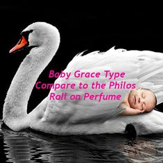 Baby Grace Type Fragrance Rollerball Pure Grace Dupe Philos