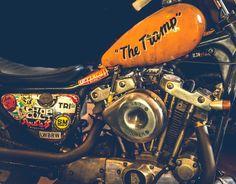 Best Harley Davidson bobber pics Old school - Japan style