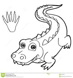Image Result For Crocodile Coloring Pages