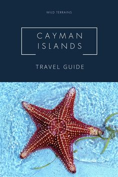 Plan your perfect trip with this Cayman Islands Travel Guide. It also includes a free printable free three day itinerary!