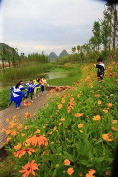 Minghu Wetland Park by Turenscape 12 « Landscape Architecture Works | Landezine