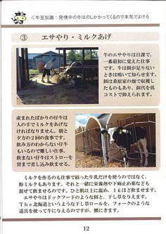 12ページ:牧場のお仕事④