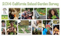 Let's help school garden's grow in 2014! The survey has a full report on the impact school gardens have on students overall health and nutrition.