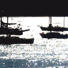 Bodega bay boats