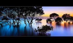 panoramic photography#amazingphotos #panoramicpictures