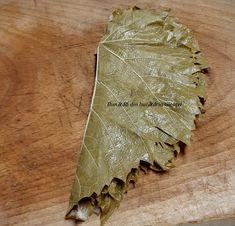 Frunze de vita-de-vie la saramura - Bunătăți din bucătăria Gicuței Food, Life, Essen, Meals, Yemek, Eten
