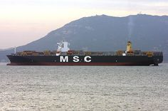 MSC Daniela with boxes