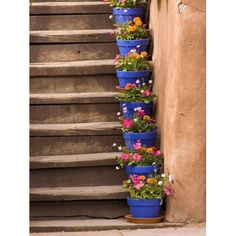 Container Gardening Ideas Photographic Print: Staircase Decorated with Flower Pots, Santa Fe, New Mexico by Nancy